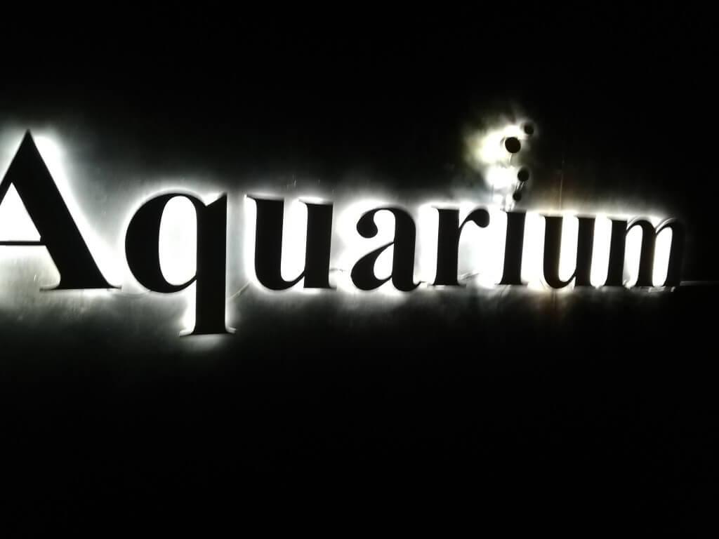 セブ島のKTVのアクアリウム(Aqualium)はおしゃれでかつお持ち帰りができるぞ